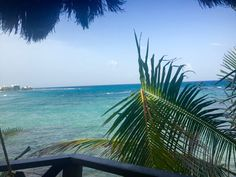 The view from Secrets Akumal is amazing