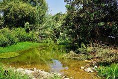 Good morning from #Hasbayya صباح الخير من حاصبيا By Jack Sakabedoyan  #Lebanon #WeAreLebanon