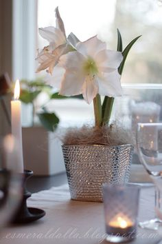 Love this as a centerpiece, sparkly pot and all!