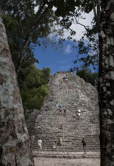 Coba - one of the coolest Mayan sites. My favorite part about this site is that you can ride a bike through the jungle from ruin to ruin and still climb to the top of the temple... What an experience!
