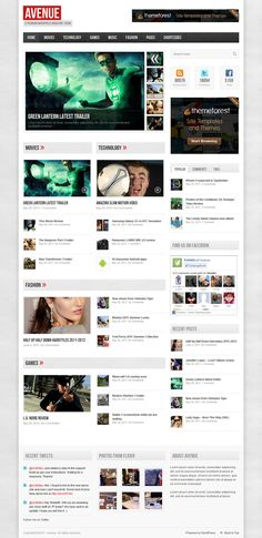 Professional Wordpress Themes Of 2013