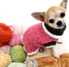 Pink Dog Sweater Hand Crochet Clothes Pet Clothing Chihuahua Sweater  D861 - Free Shipping. $30.00, via Etsy.