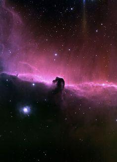 Kosmische Raffinerie im Orion  Astronomen finden im Pferdekopfnebel mit der 30-Meter-Antenne des IRAM Hinweise auf riesige Erdölvorkommen. // Beliebtes Bildmotiv für Astrofotografen – und kosmische Erdölraffinerie: der Pferdekopfnebel im Sternbild Orion. (Bild: T. A.Rector, NOAO, AURA, NSF & Hubble Heritage Team, STScI, AURA, NASA)  http://www.pro-physik.de/details/news/3738251/Kosmische_Raffinerie_im_Orion.html