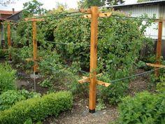 die obi selbstbauanleitungen diy pinterest garden love garden und balcony garden. Black Bedroom Furniture Sets. Home Design Ideas