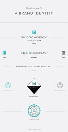 Branch | The Anatomy of A Brand Identity
