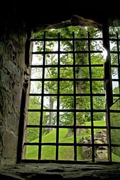 """""""From the basement"""", Huntly, Scotland"""