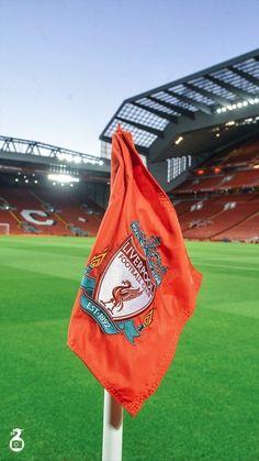 Liverpool Football Club, Football Team, Liverpool Fc Wallpaper, Breathe, England, Bird, Sports, Fashion, Hs Sports
