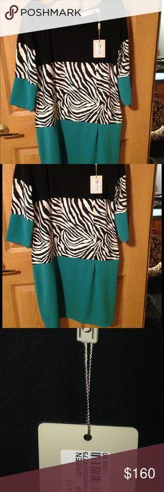 NWT  CLN dress Beautiful NWT dress very soft . Great Shape Celine Dresses Asymmetrical