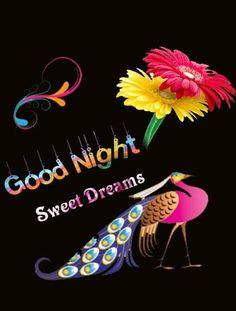 Good Night Images Wallpapers for Whatsapp Evening Greetings, Good Night Greetings, Good Night Messages, Good Night Wishes, Good Morning Good Night, Good Night Quotes, Morning Quotes, Night Time, New Good Night Images
