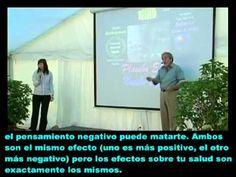 Bruce Lipton - explicacion cientifica del poder de la mente sobre el comportamiento de las celulas y el organismo humano , influencias de entorno y pensamientos
