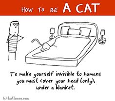 HOW TO BE A CAT | Comic
