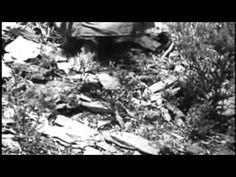 «Las Hurdes, Terra sem Pão» de Luis Buñuel | 1933. Primeiro filme de geografia humana