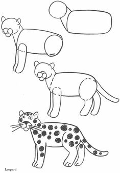 How to draw animals - leopard