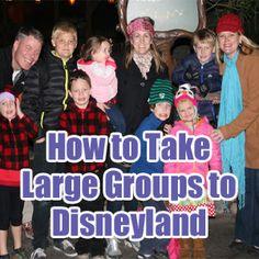How to Take Large Groups to Disneyland