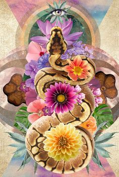 Soul Collage, Collage Art, Art Pictures, Photos, Chakra Art, Snake Art, Yoga Art, Hippie Art, Visionary Art