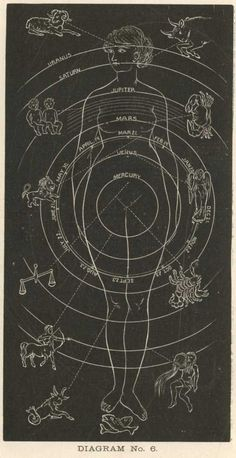 Astrological Chart and its Human Alignments.