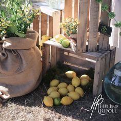 déco mariage champêtre jaune vin d'honneur citron