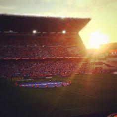 Un verano es mucho tiempo sin verte. #atleti #aúpaatleti #vicentecalderon #atletilaspalmas #laliga