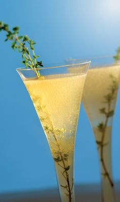 4 Organic Cocktails for Your Holiday Celebration | Rodale News