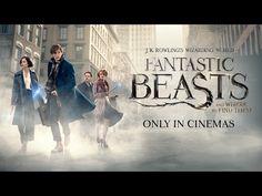 fanrasticbeasts - Google Search