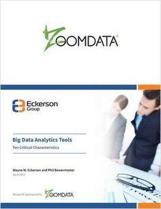 Big Data Analytic Tools Checklist -- Ten critical characteristics of a big data analytics tool