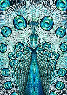 Peacock Art...
