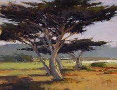Monterey Peninsula Cypress by Brian Blood Oil ~ 11 x 14 Monterey Cypress, Watercolor Wave, Monterey Peninsula, Cypress Trees, California Dreamin', Landscape Art, Creative Art, Art Projects, Sky