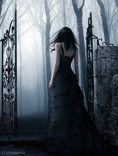 #dark_woods #fantasy_art #gothic