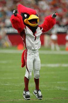 Arizona Cardinals Mascot - Big Red  Created by Street Characters Inc.