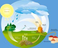 Das grüne Dorf | Biomasse