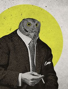 Night Owl  by Chase Kunz