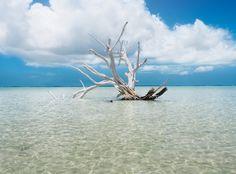 Pink Sands Resort - Bahamas