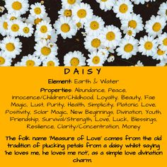 Daisy Element & Properties
