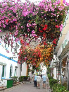 Flowers in streets of Puerto Mogan in Gran Canaria, Spain