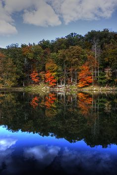 Shawnee State Forest, Ohio; photo by .Roy Green