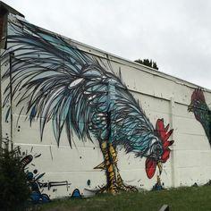 bird graffiti - Google Search
