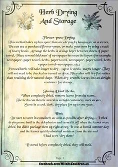 Herbs:  #Herb Drying and Storage Page 3 of 3.