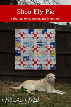 Digital pdf Quilt Pattern - Shoo Fly Pie - Baby, Lap, Twin, Queen, King Sizes - Fat Quarter Friendly - Modern Quilt Pattern