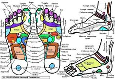 Teach yourself Reflexology foot massage with our video