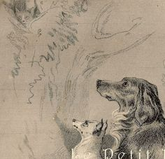 Edwin Landseer 1870 Victorian Dogs and Cat Engraving, 'Safe!' | PetitPoulailler - Antiques on ArtFire