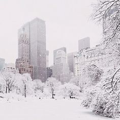 NYC never ending winter
