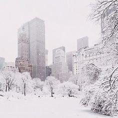 NYC. Snowy Central Park SE corner