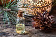 Glass Vase, Decor, Naturopathy, Natural Treatments, Candle, Beautiful Images, Plant, Decoration, Decorating