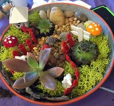 Drink, Dig and Create a Fairy Garden Terrarium With Us at Local Hot Spots! We bring over 150 succulents to every party and create your own unique fairy garden ideas!
