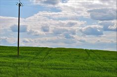 Green and blue. Grass and sky