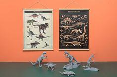 Vintage stijl poster/schoolplaat met aan de ene kant illustraties van stoere dino's en aan de andere kant een grafische weergave van hun skeletten.