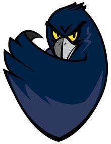 Monmouth University - hawk mascot Monmouth University, University Logo, Team Mascots, School Logo, Great Logos, Hawks, Superhero Logos, Cheerleading, Team Logo