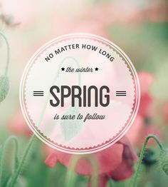 A touch of spring is in the air today. Visit our website for some great spring fashion styles First Day Of Spring, Spring Is Here, Hello Spring, Spring Time, Happy Spring, Spring Quotes, Pink Photography, Welcome Spring, Frases