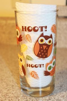 """Vintage Owl Tumbler Drinking Glass Cup Glassware """"Hoot"""" Leaves Stocking 1970's #Unbranded"""