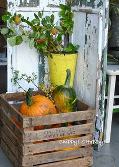 ChiPPy! - SHaBBy!   Pumpkin Display... PeRfeCt ON-THE-PORCH!*!*!